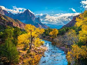 Фотографии Штаты Парки Зайон национальнай парк Горы Реки Осенние Облачно Деревья Virgin River, Utah