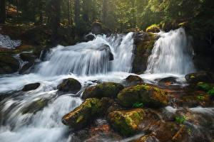 Фотография Водопады Камни Скала Мха Природа