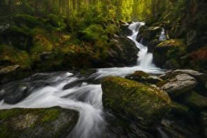 Обои Водопады Камни Мох