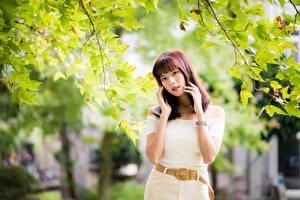 Обои Азиатки Ветка Поза Руки Взгляд молодые женщины
