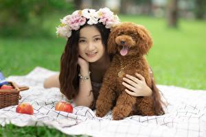 Обои для рабочего стола Азиатки Собаки Венком Лежит Пудель Улыбается Девушки