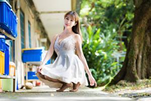 Картинка Азиатка Платья Сидя Смотрит молодые женщины