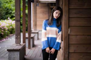 Фото Азиаты Поза Руки Свитере Смотрит молодая женщина