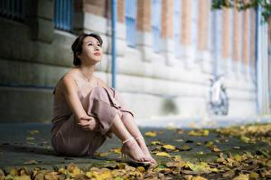 Фото Азиаты Поза Сидя Листья Ноги Размытый фон Взгляд Девушки