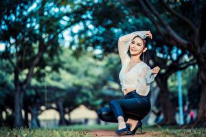 Картинки Азиаты Поза Сидит Брюки Блузка Боке девушка