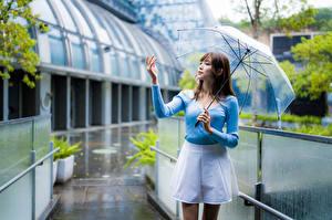 Фотографии Азиатки Дождь Поза Зонтик Руки Боке Девушки