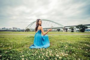 Фотографии Азиаты Сидит Платье Трава молодая женщина