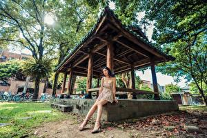 Обои Азиатки Сидящие Платье Ноги Смотрит молодая женщина