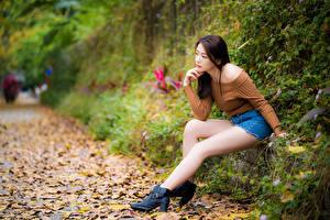 Фотографии Азиатка Сидит Ног Листья Боке молодая женщина