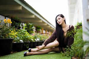 Фото Азиатка Сидящие Позирует Ноги Боке Девушки