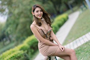 Обои Азиаты Улыбается Поза Платья Декольте Смотрят Размытый фон