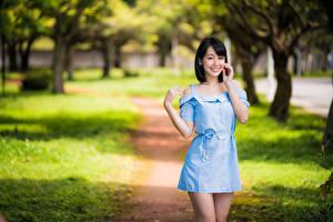Картинки Азиаты Улыбается Позирует Платья Смотрят Размытый фон молодая женщина