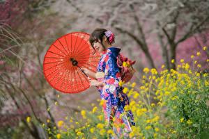 Картинка Азиаты Зонт Кимоно девушка