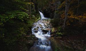 Картинка Осенние Камень Ручей Мох Природа