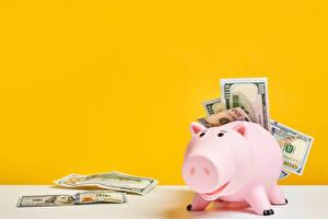 Картинка Банкноты Деньги Доллары Цветной фон Свинья копилка