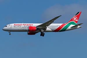 Картинки Боинг Самолеты Пассажирские Самолеты Сбоку 787-8, Kenya Airways