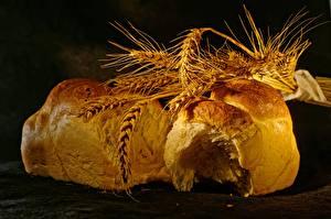 Обои Хлеб Пшеница Колос Еда картинки
