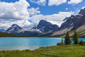 Обои для рабочего стола Канада Озеро Гора Небо Снег Ель Облачно Bow Lake Alberta Природа