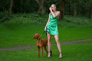 Обои для рабочего стола Собаки Поза Улыбается Ног Платье Jodie Девушки Животные