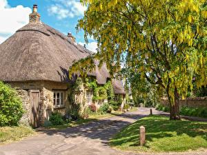 Картинки Англия Дома Цветущие деревья Поселок Great Rollright, Oxfordshire Города