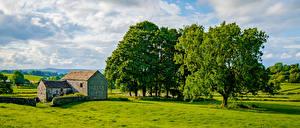 Картинка Англия Панорамная Дерева Облачно Chelmorton Природа