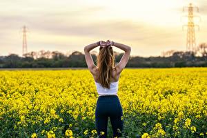 Фотография Поля Рапс Позирует Вид сзади Рука девушка Природа