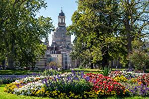 Картинка Германия Дрезден Здания Парк Дерева