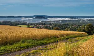 Картинки Германия Поля Утро Тумане Saxony Природа