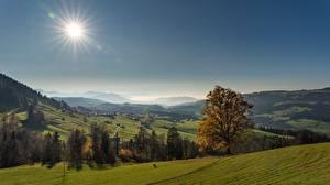 Фотографии Германия Луга Осенние Леса Горизонт Холмы Солнце Black Forest, Baden-Württemberg