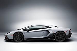 Фото Lamborghini Серые Сбоку Aventador LP 780-4 Ultimae, (LB834), 2021