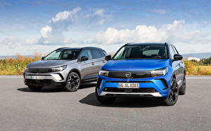 Фото Opel 2 Синих Серые Металлик Grandland, 2017 -- машины