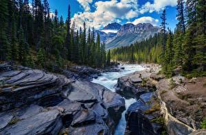 Фото Речка Леса Горы Пейзаж Камень Природа