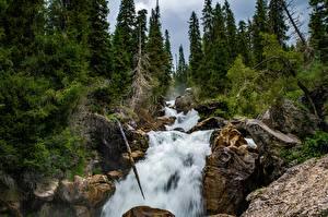 Обои для рабочего стола Речка Водопады Дерева Скала Kara-Kamysh, Kyrgyzstan Природа