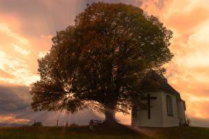 Фотографии Рассвет и закат Церковь Лучи света Дерево Крест