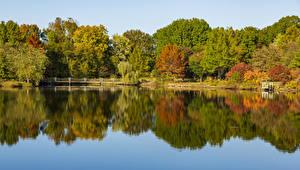 Фотографии США Осень Речка Мосты Дерево Ozarks Missouri Природа