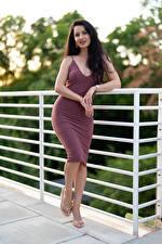 Картинка Victoria Bell Поза Платье Брюнетка Руки Взгляд девушка
