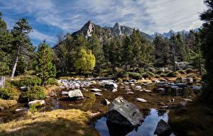 Обои Андорра Горы Камни Деревья Madriu Природа картинки