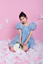 Фотографии Азиаты Букеты Цветной фон Сидя Платья Смотрит девушка