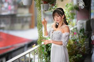 Картинки Азиаты Платье Смотрят Размытый фон молодые женщины