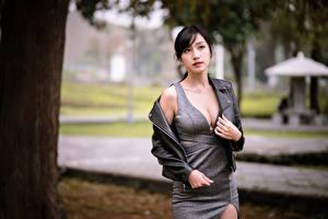 Обои Азиаты Взгляд Платье Декольте Девушки картинки
