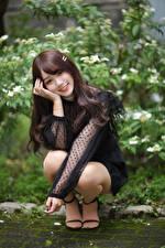 Картинки Азиатки Поза Сидящие Улыбка Взгляд Шатенки Девушки