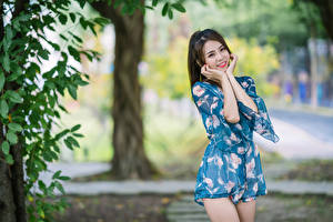 Картинка Азиатки Улыбка Поза Размытый фон молодая женщина