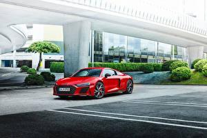 Картинка Ауди Красный Металлик R8 V10 performance RWD, (Worldwide), 2021 автомобиль
