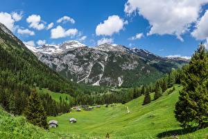 Фото Австрия Горы Луга Дома Альпы Ель