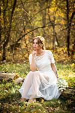 Картинки Осень Букет Траве Листва Платья Сидя Невесты молодая женщина
