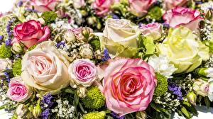 Картинки Букеты Розы Много Разноцветные