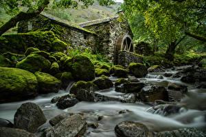Фотография Англия Реки Камни Парки Мох Деревья Водяная мельница Lake District, Cumbria Природа