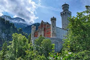Обои Германия Замки Горы Ветки Neuschwanstein Castle Города