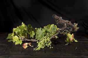 Обои Виноград Ветки Листья Природа картинки