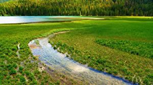 Картинки Италия Озеро Река Lake Dobbiaco Природа